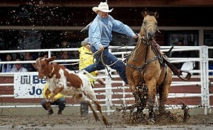 Cowboys and Rodeo
