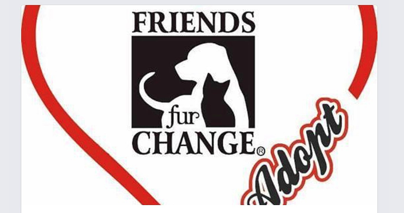 photo courtesy of Friends Furr Change Animal Adoptions