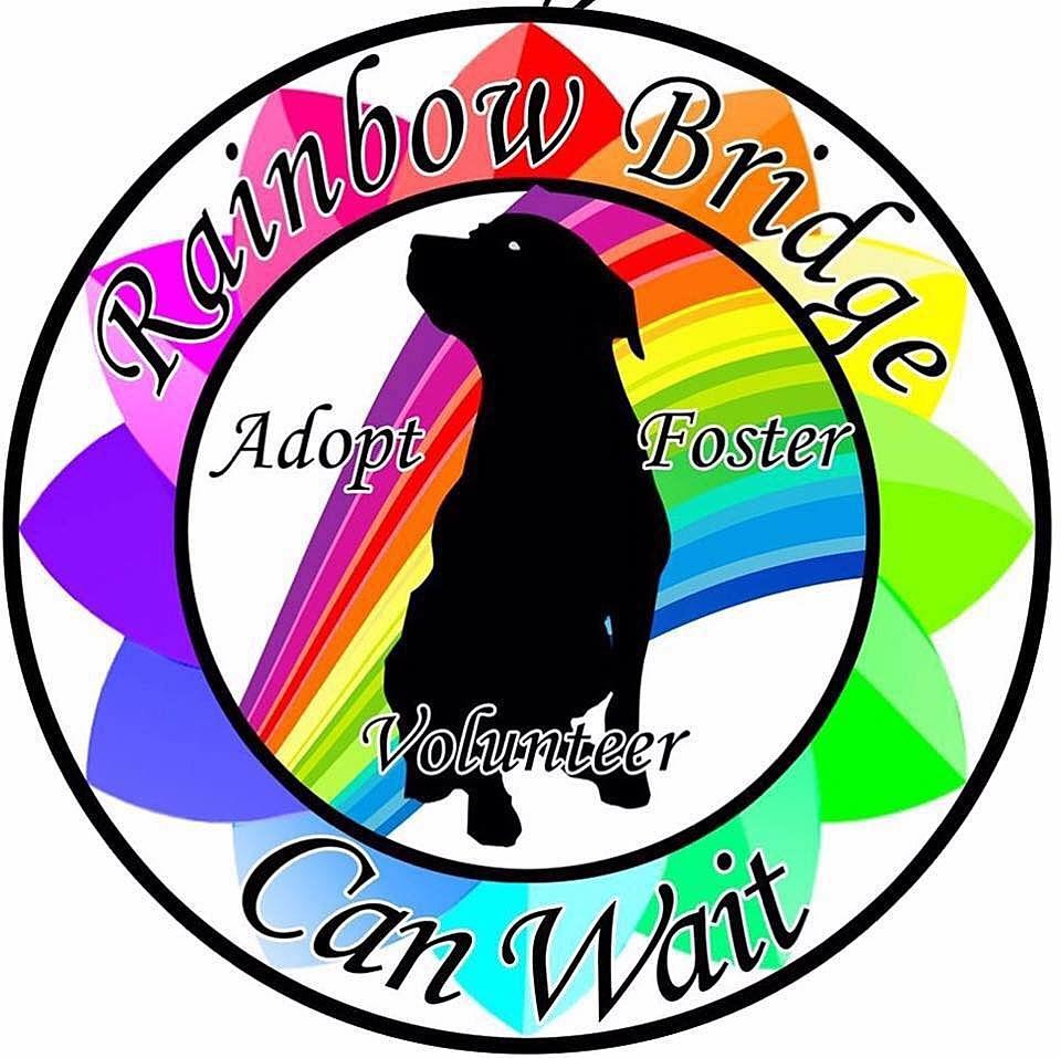 photo courtesy of Rainbow Bridge Can Wait